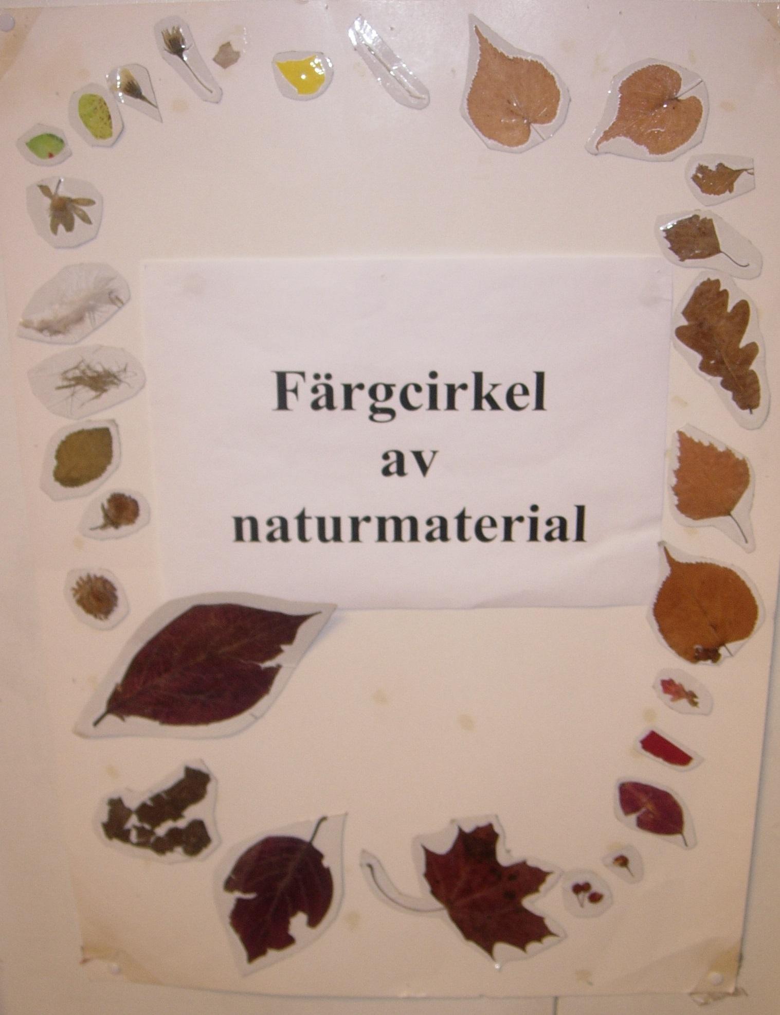 """Bilden visar ett försättsblad med torkade blad och med texten """"Färgcirkel av naturmaterial"""""""