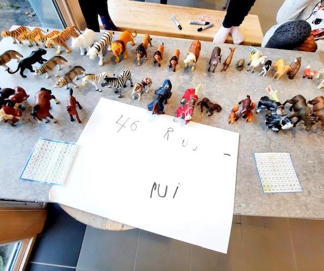 Leksaker som är sorterade i grupper